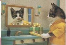 cats / by Dana Steiner
