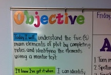 TAP: Standards and Objectives