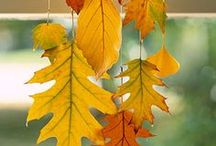 Fall / by Leslie Pruitt