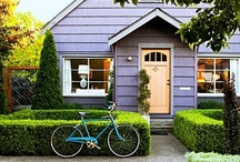 Curb Appeal / by Chestnut Park Real Estate