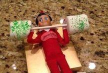 Elf on the Shelf / by Kathy Urbanowicz