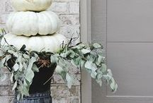 Thanksgiving Decor / Thanksgiving decor for your home and family
