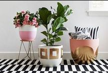 Homewares for a prettier home / I want a Pinterest worthy home & decorate it all with these pretty homewares!