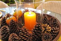 decoration holidays and holiday recipes / by Pam Conroy