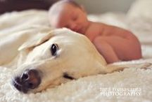Babies And Puppies! / Cute, Cute, Cute! / by Lena
