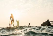 // s u p \\ / paddle surfing