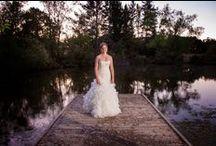Wedding Dresses / Wedding Dresses