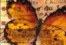 Butterflies, Papillons, Mariposas, Farfallas, Borboletas and Papillons de Nuit / by Leilani Olson Camden