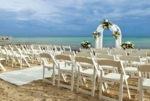 Beach Weddings  / Ideas for your dream wedding on either one of our private beaches in Key West. / by Casa Marina /The Reach Resort