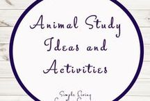 Animal Study Ideas and Activities / Study Ideas | Activities | Homeschooling | Educational | Animals  | Printables | Learning | Unit Studies | Crafts