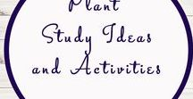 Plant Themed Activities and Ideas / Study Ideas | Activities | Homeschooling | Educational | Sunflower  | Printables | Learning | Unit Studies | Crafts | Plants | Garden
