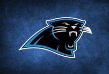 Carolina Panthers / Football / by Linda Moore