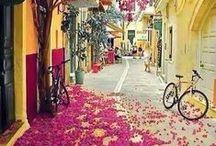 Reiselust - Valentins Fundgrube / Sammle mit Valentins Blumen- und Geschenkversand Impressionen von Blumen auf der ganzen Welt und wecke Deine Reiselust.