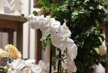 Valentins Dekowelten / Valentins Blumen- & Geschenkversand inspiriert euch mit tollen Dekorationsideen. Besuche uns auch unter - www.valentins.de