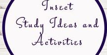 Insect Ideas and Activities / Study Ideas | Activities | Homeschooling | Educational | Insects  | Printables | Learning | Unit Studies | Crafts | Animals