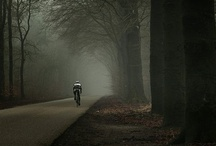 Bikes / In love with cool bikes. Check out our magazine Soigneur for more Bikelove.  https://www.facebook.com/racefietsen