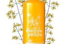 Products We Love / MELLOW YELLOW, grown, pressed and bottled here at Bottom Farm!