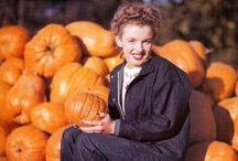 Thanksgiving Fall Decor / by Valerie Cifaldi