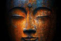Zen / by Donna W