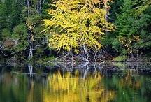 À voir en Estrie (sans neige) / Endroits à visiter dans les Cantons-de-l'Est, Québec -------------------------------------------- Nice places to visit in the Eastern Townships, Quebec / by Beah H