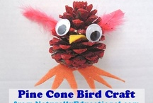 Naturally Educational Crafts and Activities for Kids / by Candace Lindemann - Naturally Educational