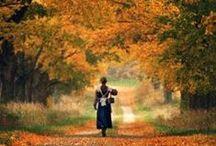 Fall is Heaven on Earth