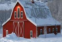 Barn Red / by eileensideways