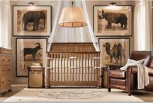 BABY SAFARI/EXPLORER NURSERY IDEAS