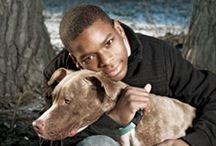 Canine Community