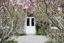 : spring time : / beautiful spring