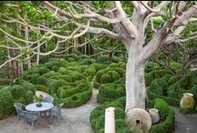 ~No3: GARDENS / EXTERIORS / See new pins on board No4: GARDENS / EXTERIORS / by G G