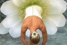 Pure Sweetness / by Diane :: An Extraordinary Day!