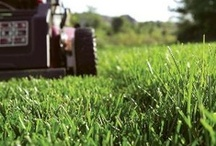 Yard Care & Equipment Care & Repair Tips / Money-saving #yard and #landscaping tips & outdoor power #equipment #maintenance, care and #repair tips from RepairClinic.com. #home #homeimprovement #lawnmower More at www.RepairClinic.com and our blog, www.DIY.RepairClinic.com.