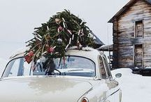 Christmas Cars with Trees & Wreaths / The whimsy and nostalgia of cars and trucks and other vehicles decorated with Christmas trees, wreaths, presents and evergreen garland for Christmas.
