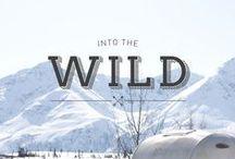 AW16 Into The Wild x