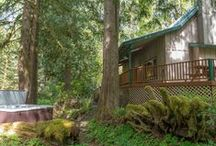 Cozy Bear Cabin / Charming, yet modern cabin tucked away among tall fir and cedar trees close to the Mt Hood National Forest. Perfect for 1 or 2 small families with full kitchen, woodstove, vaulted great room and private, outdoor hot tub. Minutes to the Salmon River Trails.