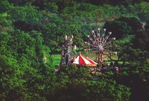 Carnivals, Carousels, & Circuses  / by Alicia