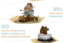 Dog Infographics / by HappyBigDog .com