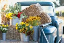 Country | Rustic Style / Country Life and a Rustic Country Style