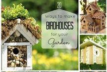 Gardening ✿ Birds Paradise / Lets Spoil our Birds in the Garden :)