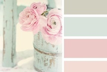 Color Paletts / by Cami Butterworth