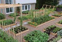 Garden/Outdoor decor