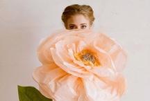 Crafts: Paper / by Elizabeth Nyberg