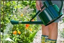 Gardening ✿ Helpful Info / Gardening info and How To