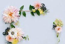Flower Power / by Joy Dreyfus