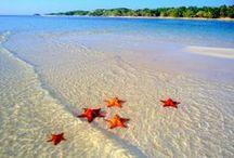 Cayman Islands / by Carla Del Ray
