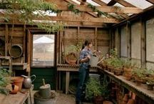 Greenhouse/Orangeri / by Karin Lindström