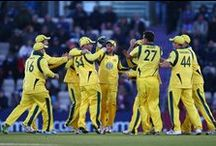 Fifth ODI: 2013 Ashes tour of England / Fifth ODI: 2013 Ashes tour of England
