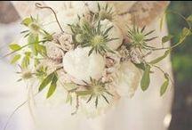 Jane Austen Styled Shoot - Green Wedding Shoes / http://greenweddingshoes.com/jane-austen-wedding-inspiration/ nbarrett photography