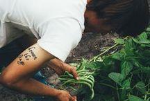 The Gardener / by Karin Lindström